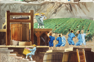 Vineyard Workers in Sonoma County